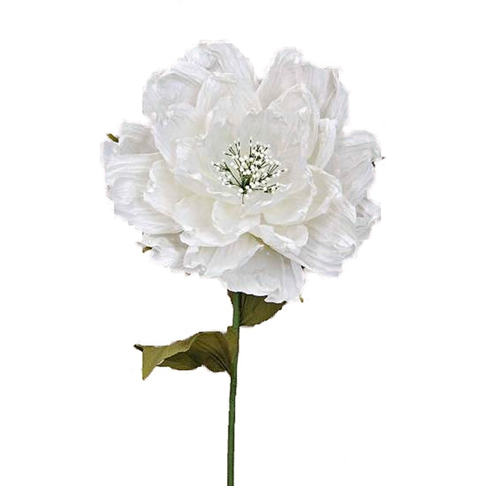 Oversized giant paper peony flower x large white theater prop larger photo mightylinksfo
