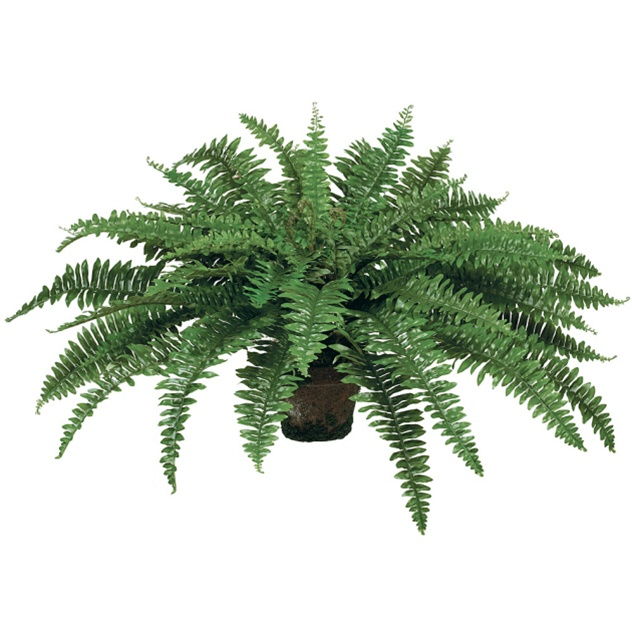 artificial boston fern - faux plants